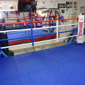 Boxing ring & mma gym gold coast