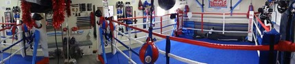 Boxing ring gym gold coast