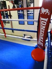 private Boxing ring robina gold coast